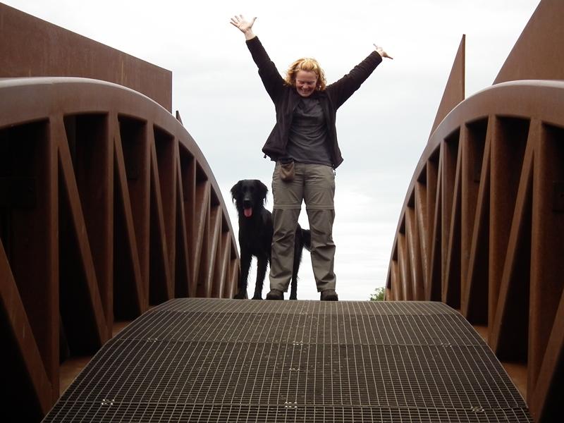 Geschafft - Brücke von oben!